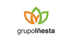 Grupo Iñesta
